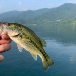 バス釣りを始めよう!初心者が楽しむための始め方と魅力を紹介!